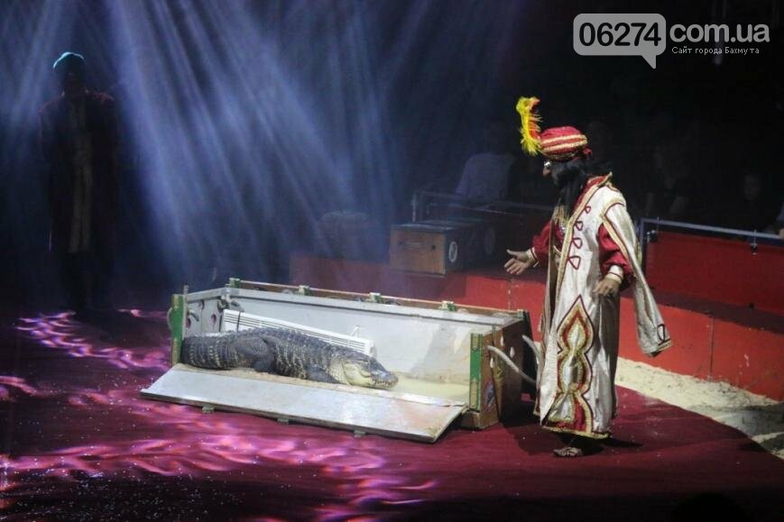 Цирковое представление от итальянцев покорило бахмутчан (ФОТО), фото-11
