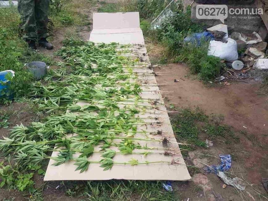 Маки цветут: полицейские собирают «урожай», фото-3