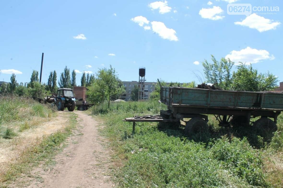 Жарко всем: работы на пруду Забахмутки еще не закончены, но местные уже купаются (ФОТОФАКТ), фото-1