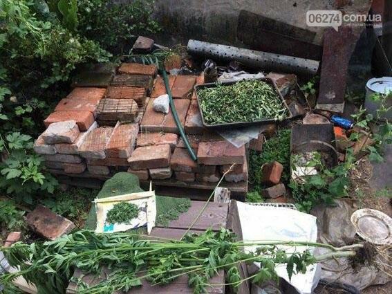 В Соледаре правоохранители задержали жителя, который ожидал урожай конопли, фото-1