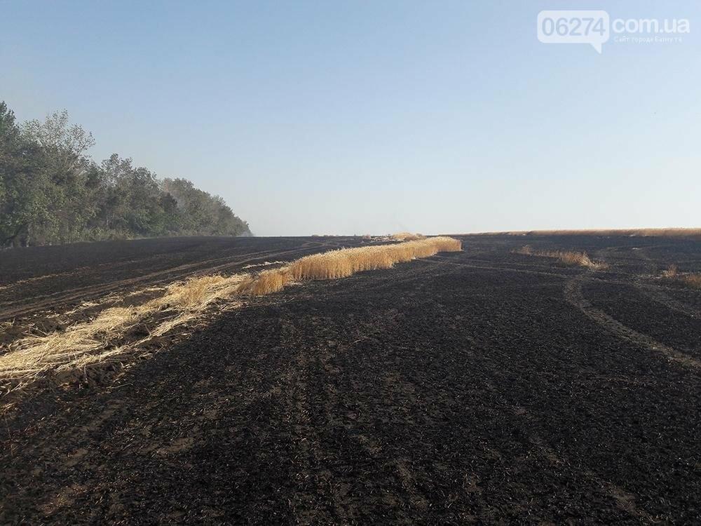 В Бахмутском районе сгорело 23 га пшеницы, фото-1