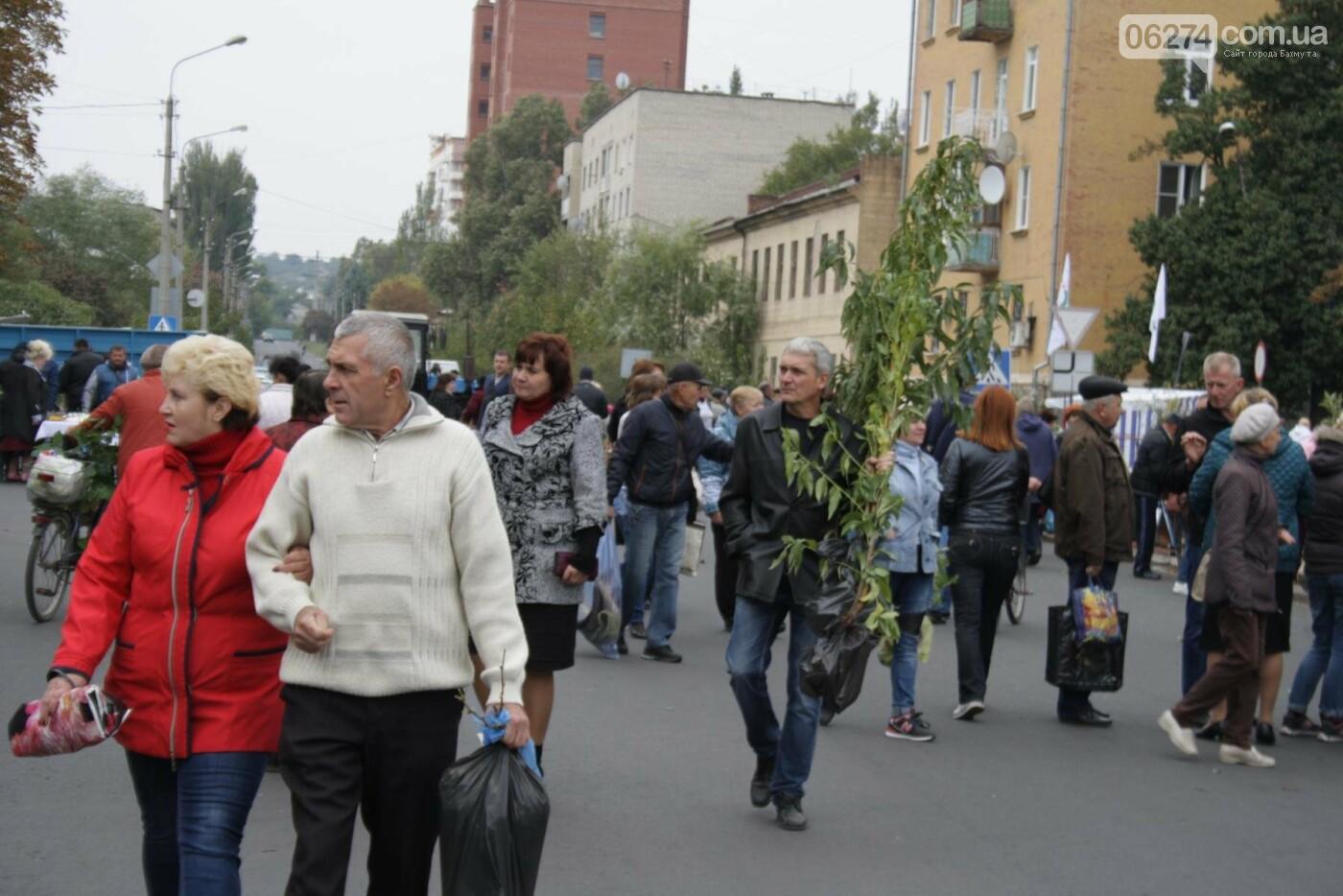 В Бахмуте открылась ярмарка «День садовода», фото-2