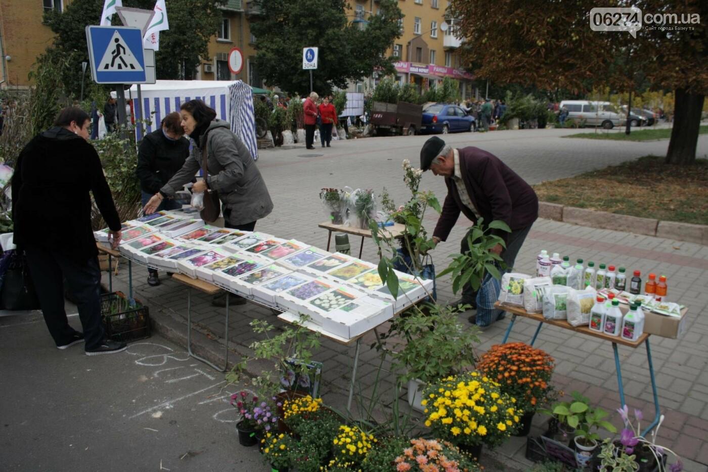 В Бахмуте открылась ярмарка «День садовода», фото-14