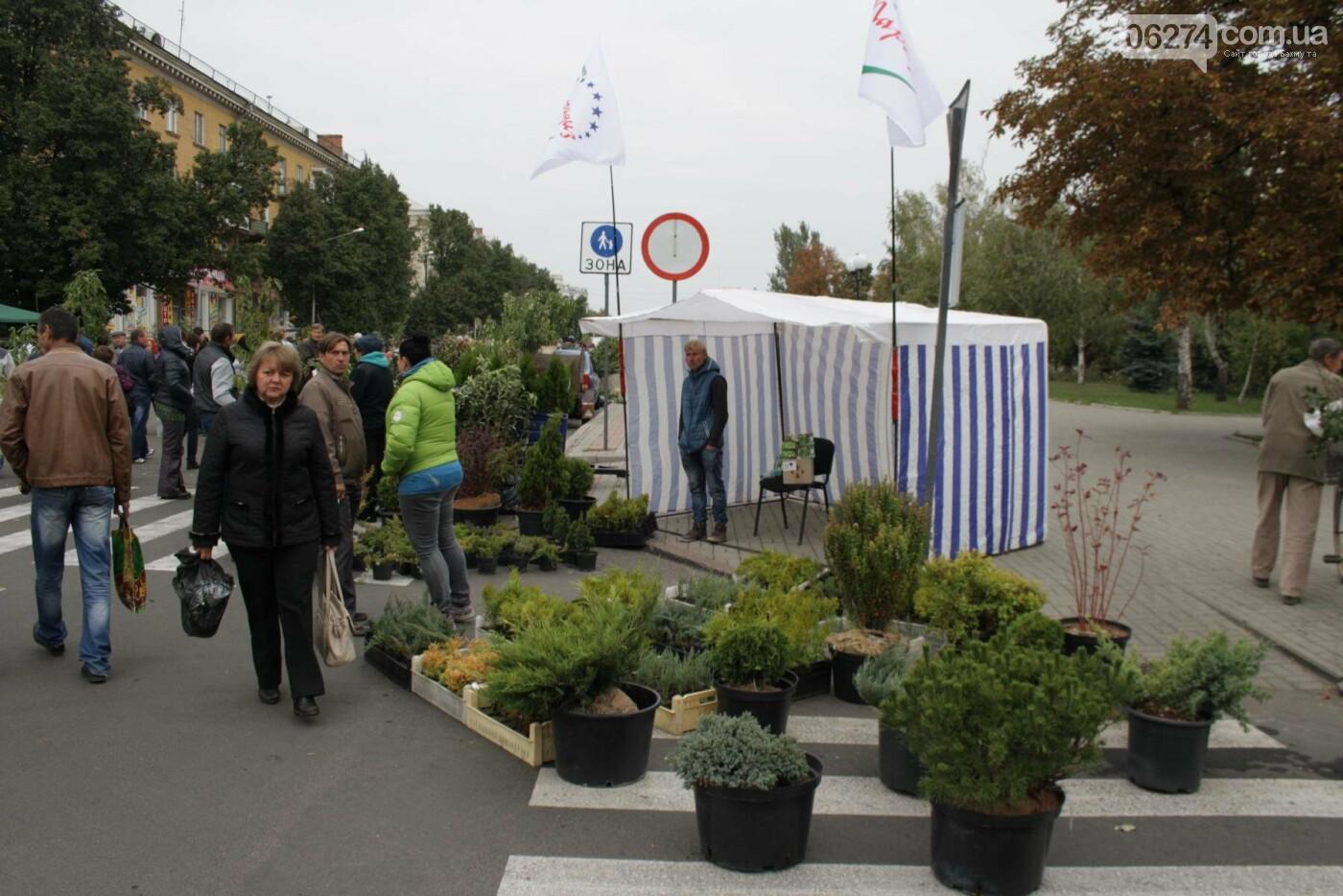 В Бахмуте открылась ярмарка «День садовода», фото-5