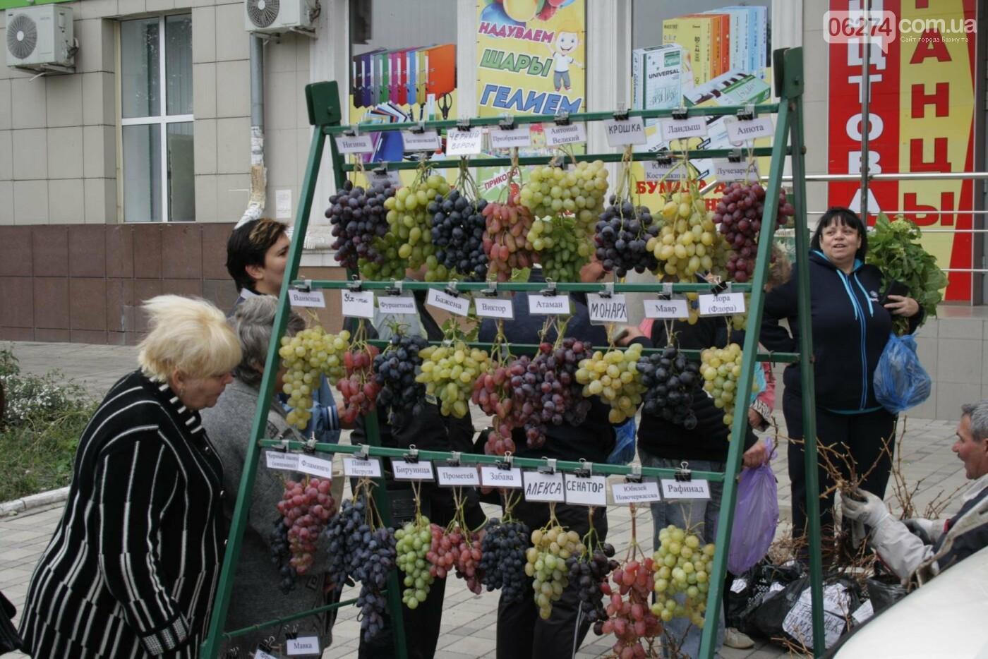 В Бахмуте открылась ярмарка «День садовода», фото-10