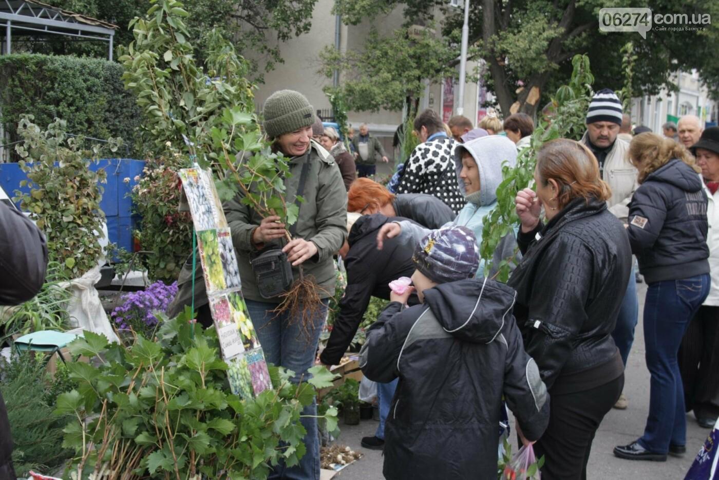 В Бахмуте открылась ярмарка «День садовода», фото-19