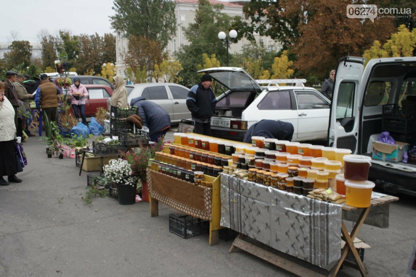 В Бахмуте открылась ярмарка «День садовода», фото-7
