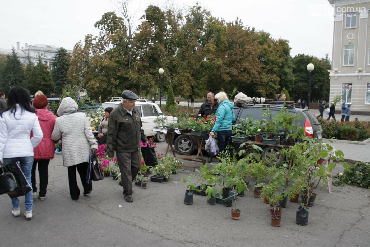 В Бахмуте открылась ярмарка «День садовода», фото-3