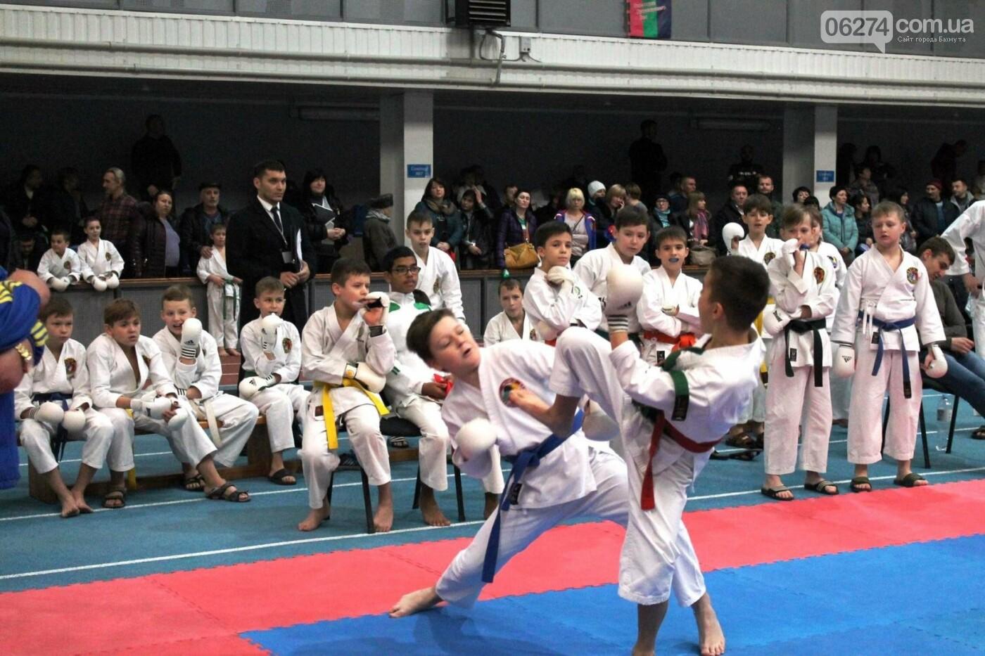 Новогодний турнир по каратэ в Бахмуте, фото-3