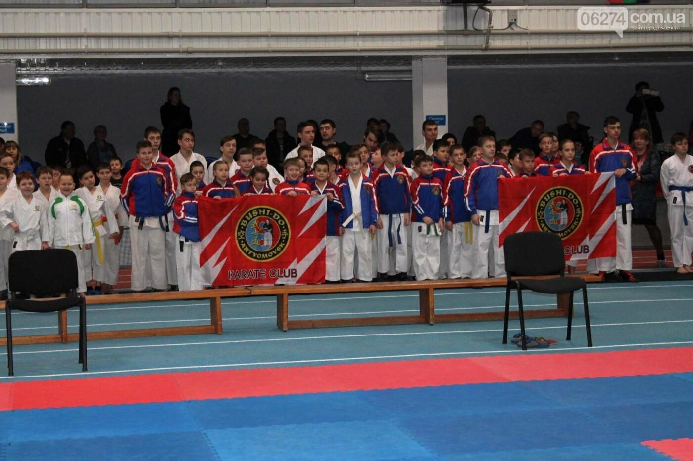 Новогодний турнир по каратэ в Бахмуте, фото-1