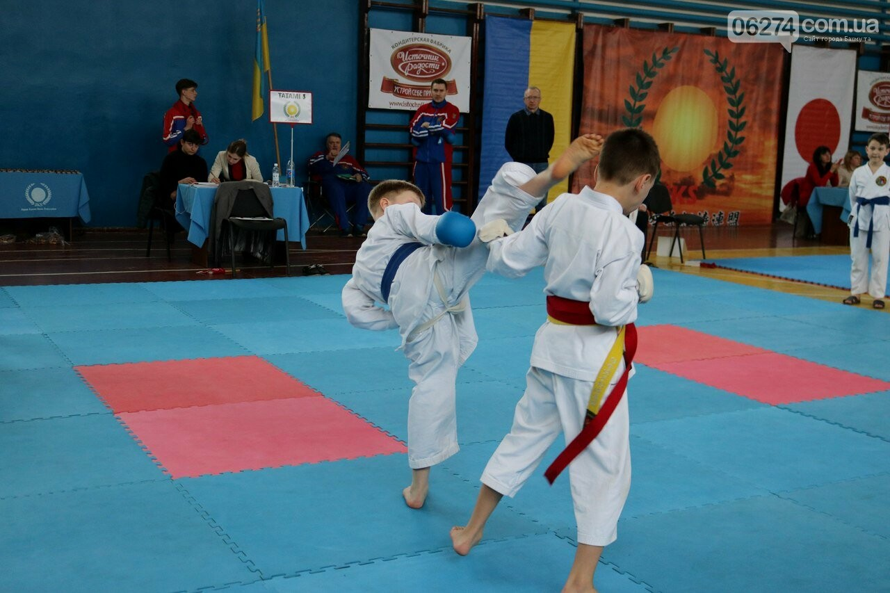 Каратисты Бахмута завоевали 73 медали на областном чемпионате, фото-3