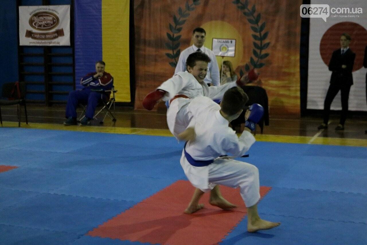 Каратисты Бахмута завоевали 73 медали на областном чемпионате, фото-2