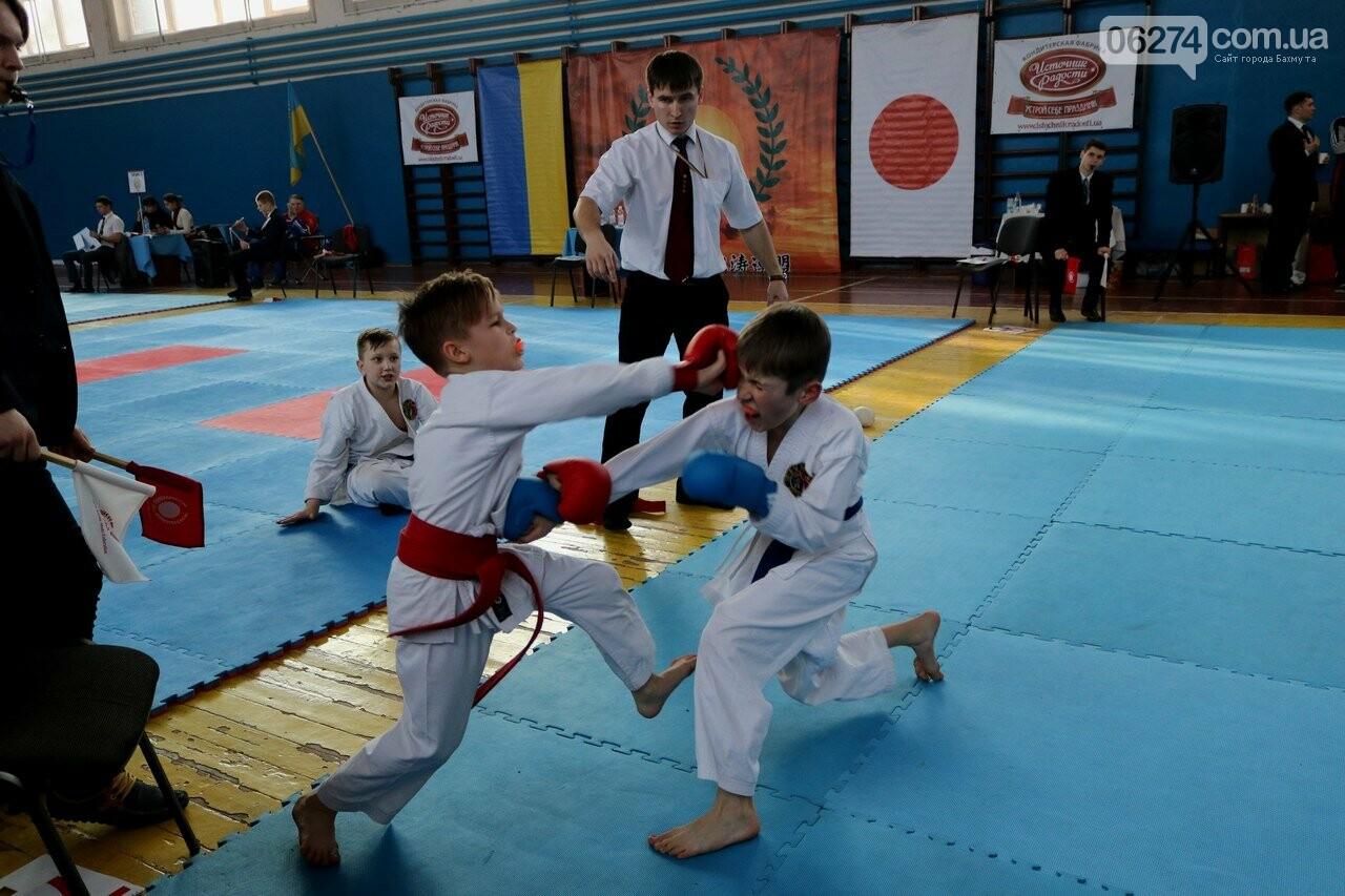 Каратисты Бахмута завоевали 73 медали на областном чемпионате, фото-4