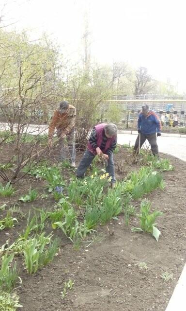 Школьники и студенты Бахмута приняли участие в общегородской экологической акции (ФОТО), фото-9