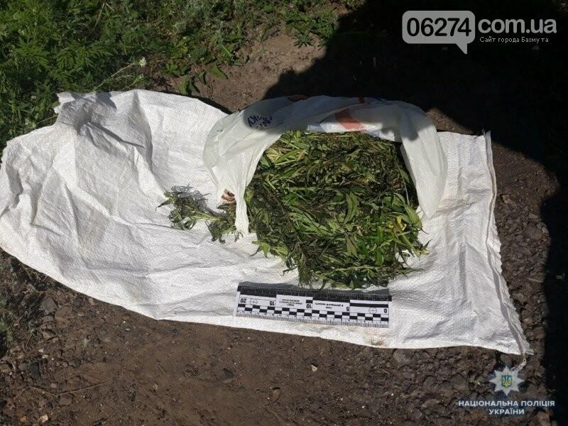 Три года тюрьмы грозит бахмутчанину за хранение «травки», фото-1