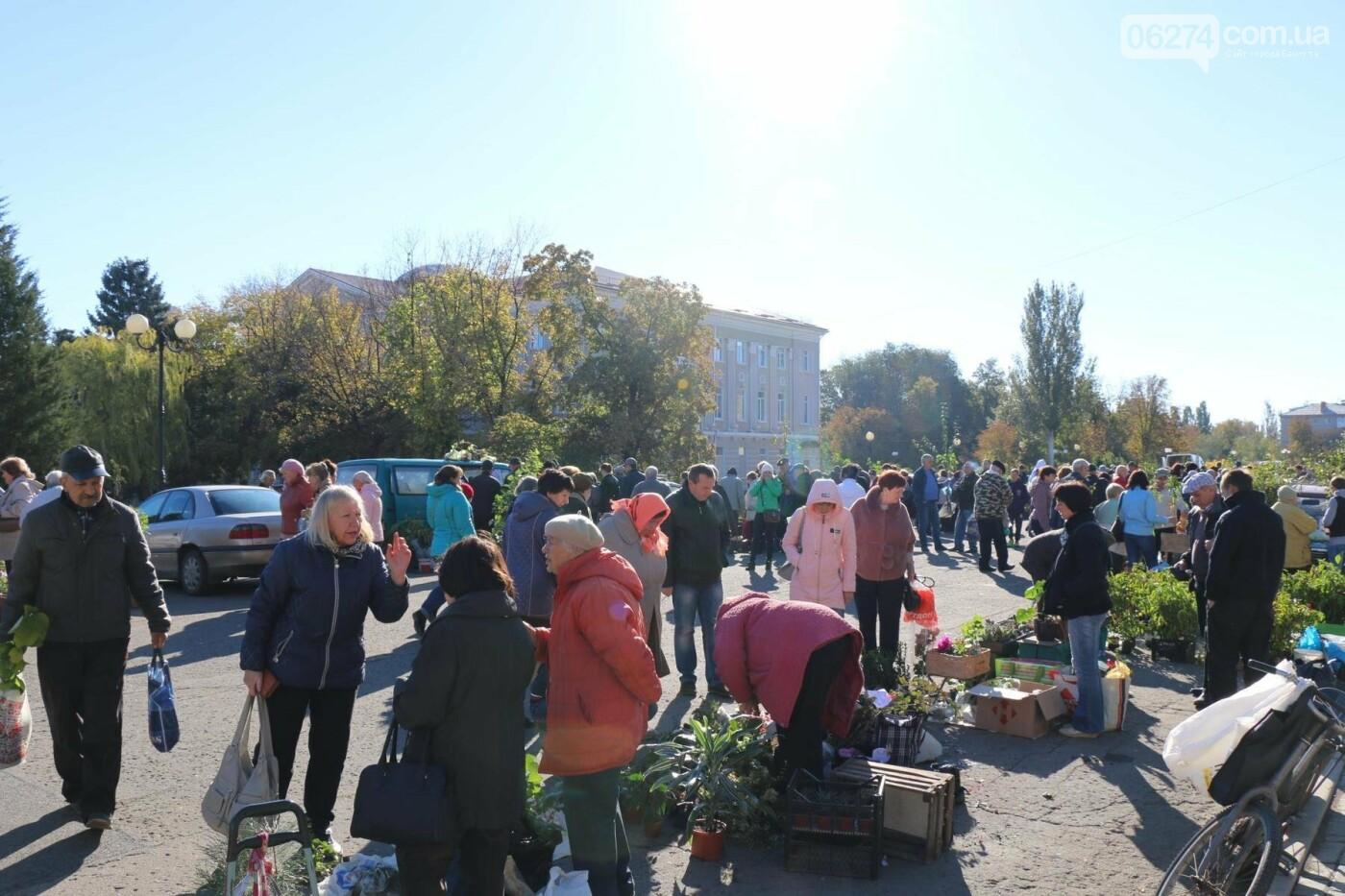 В Бахмуте прошла ярмарка «День садовода» (ФОТО), фото-2