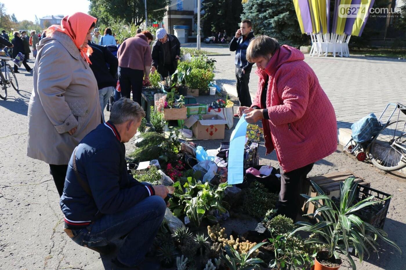 В Бахмуте прошла ярмарка «День садовода» (ФОТО), фото-9