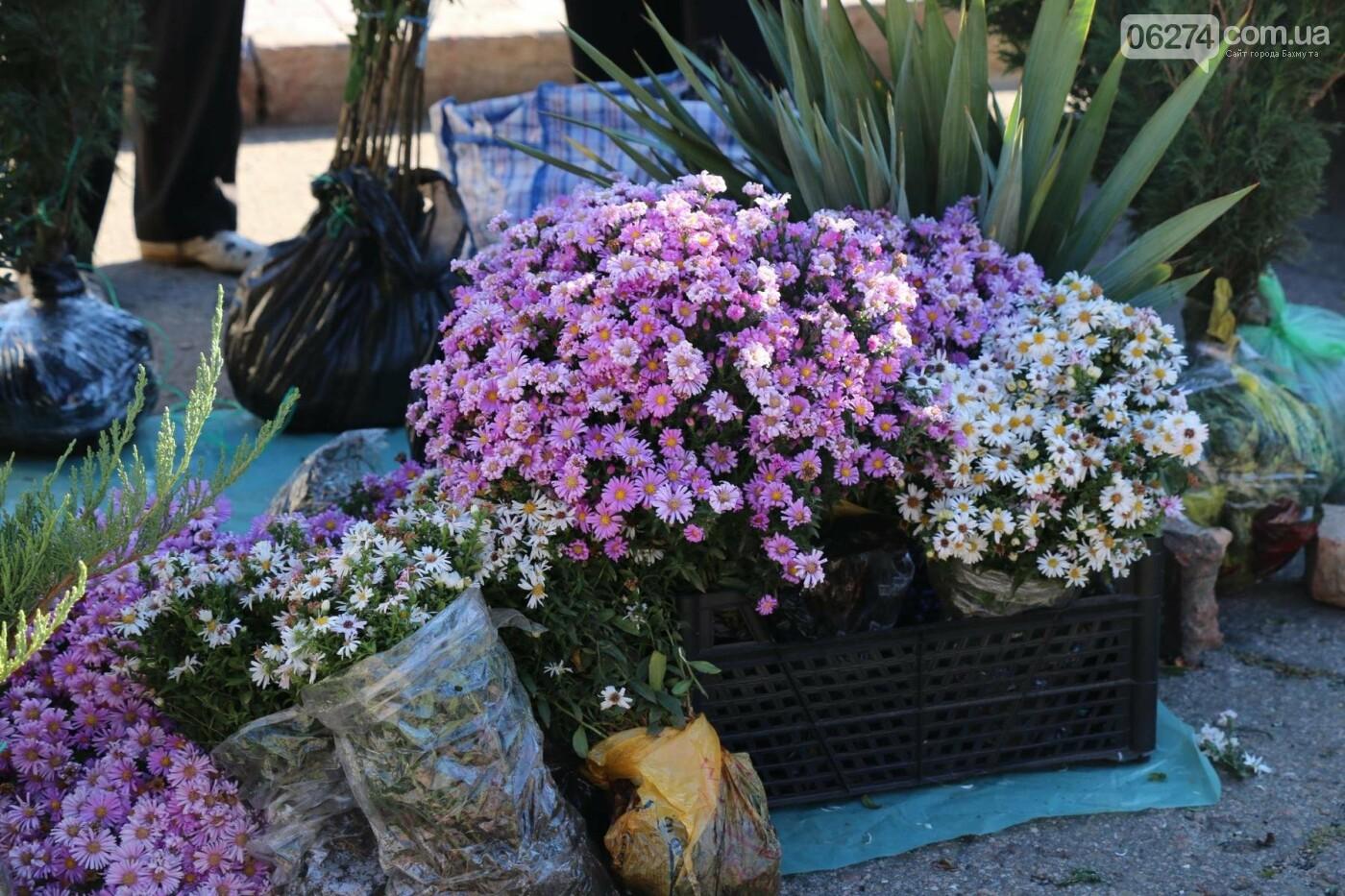 В Бахмуте прошла ярмарка «День садовода» (ФОТО), фото-16