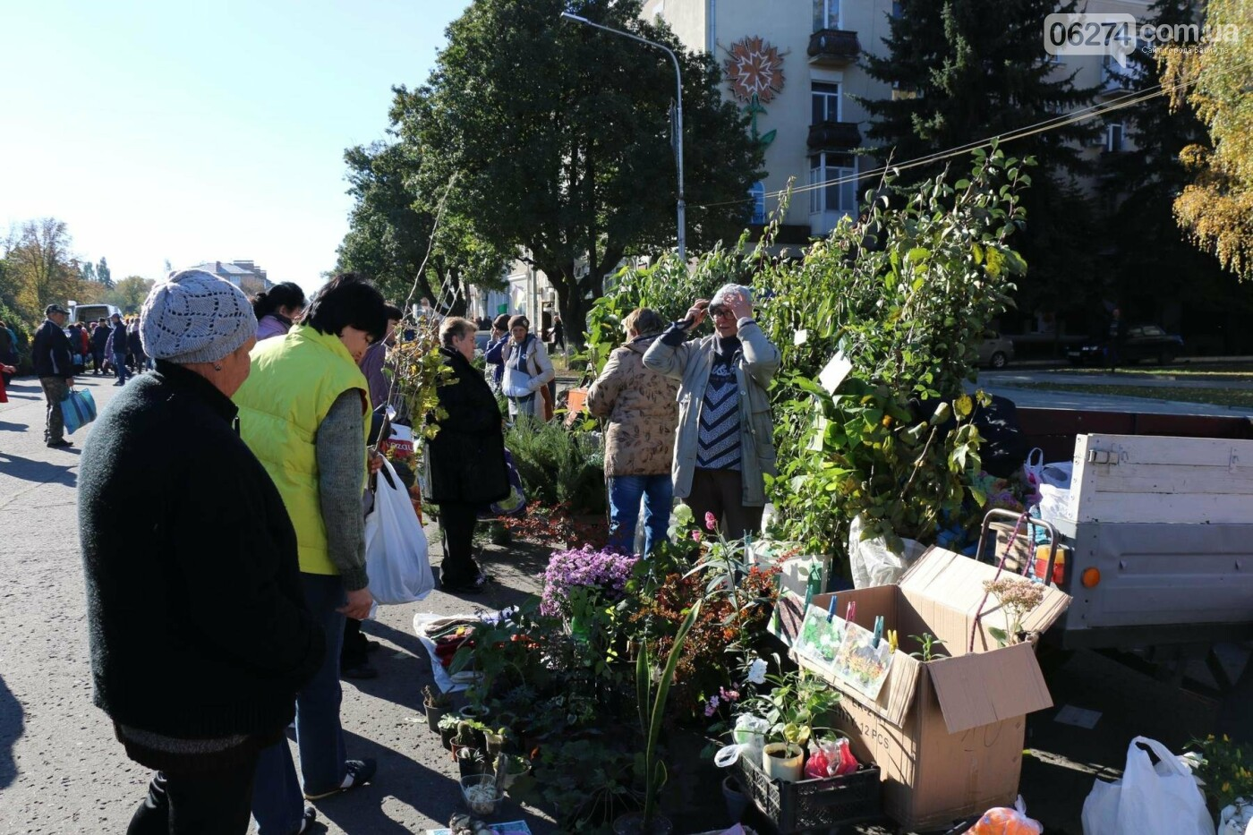 В Бахмуте прошла ярмарка «День садовода» (ФОТО), фото-5