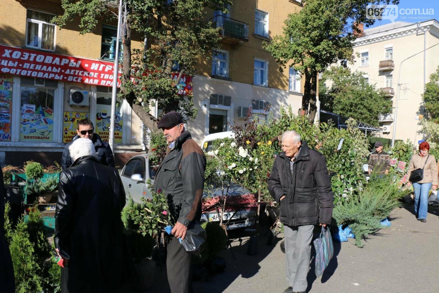 В Бахмуте прошла ярмарка «День садовода» (ФОТО), фото-19