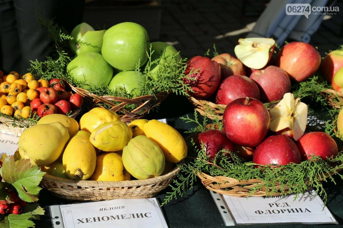 В Бахмуте прошла ярмарка «День садовода» (ФОТО), фото-14