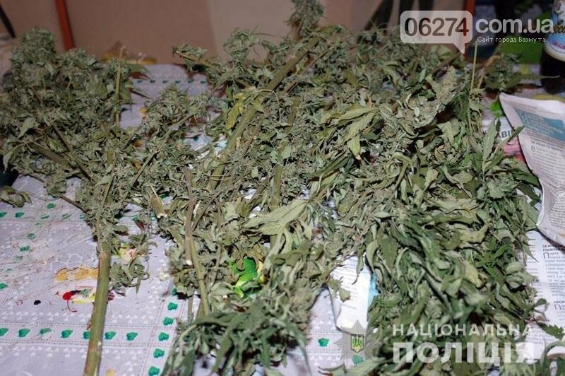 Несколько килограммов марихуаны изъяли полицейские у жителя Соледара, фото-3