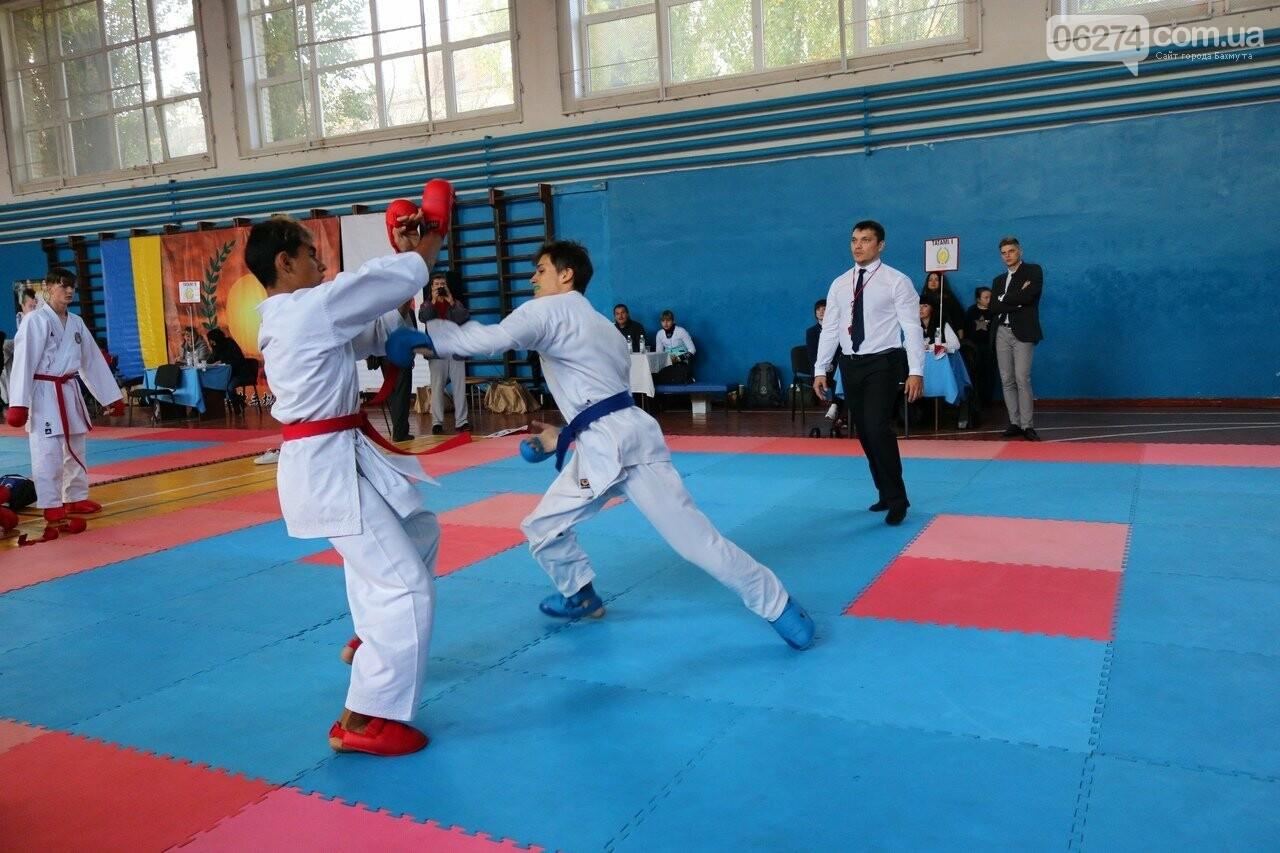 Бахмутские каратисты стали лучшими на областных соревнованиях в Славянске, фото-5