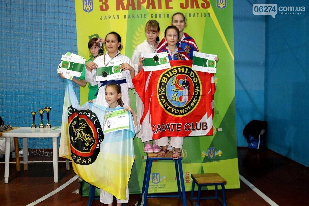Каратисты Бахмута в составе областной сборной успешно выступили на Кубке Украины, фото-9