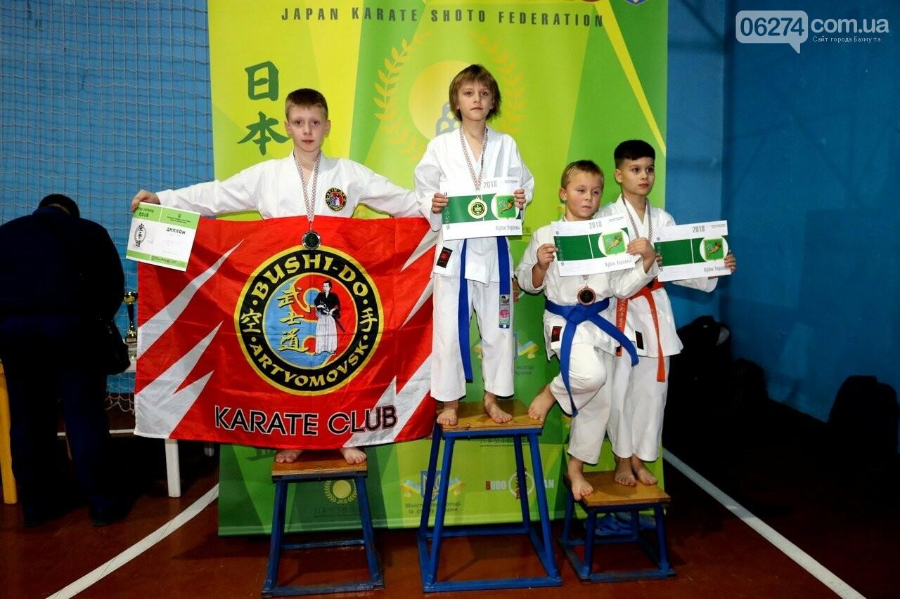 Каратисты Бахмута в составе областной сборной успешно выступили на Кубке Украины, фото-8