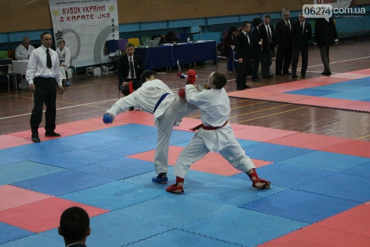 Каратисты Бахмута в составе областной сборной успешно выступили на Кубке Украины, фото-3