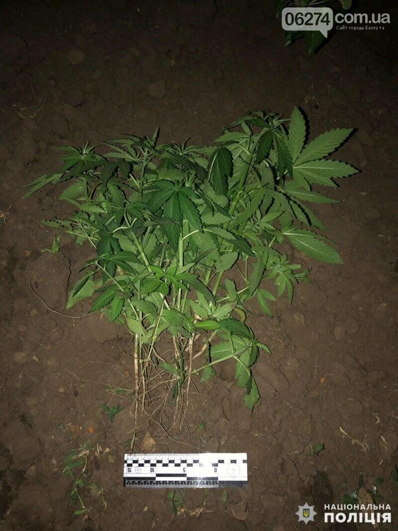 В Бахмуте 50-летняя женщина выращивала наркорастения, фото-1