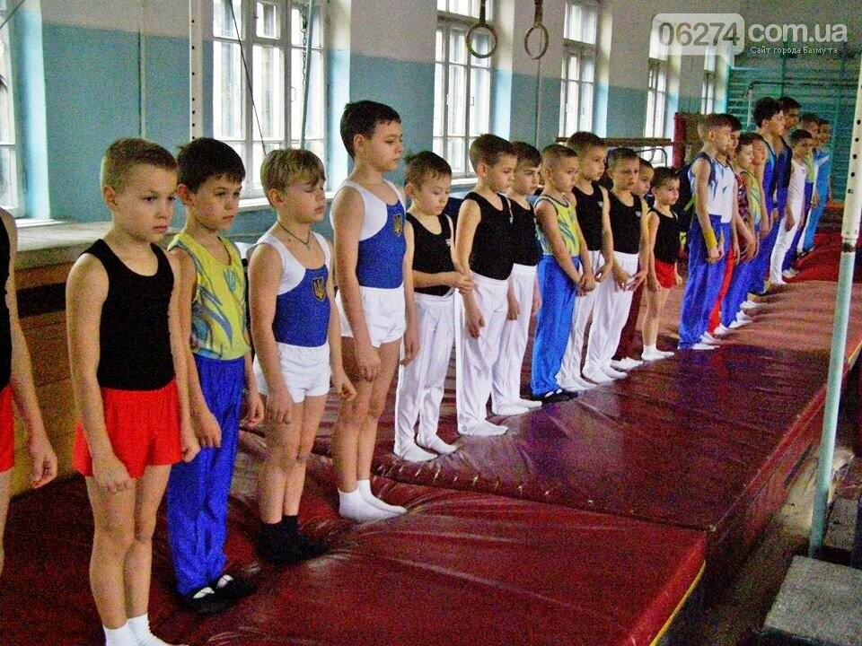 В Бахмуте прошел Открытый областной турнир по гимнастике, фото-1