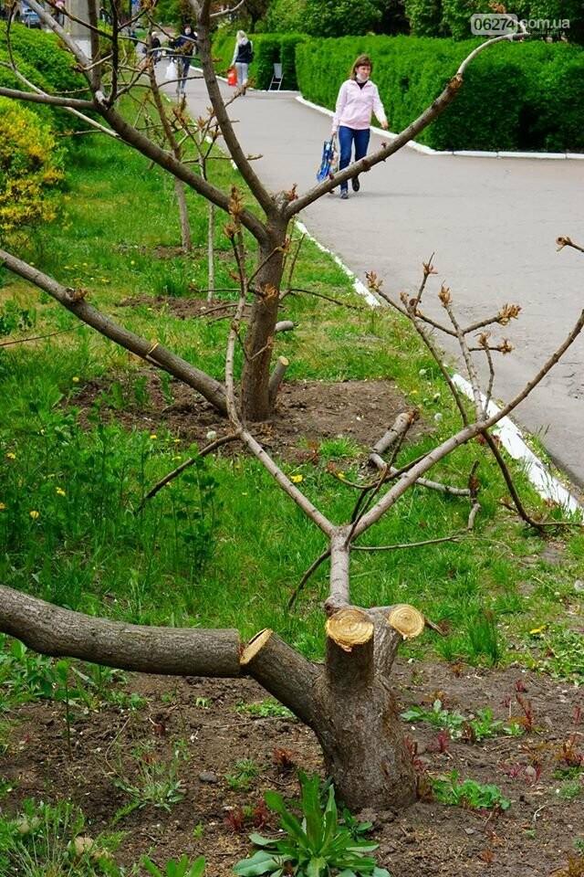В Бахмуте вандалы сломали аллею деревьев (ФОТО), фото-4