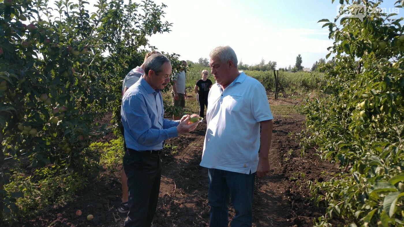 Мэр Бахмута обсудил проблемы сельского хозяйства в старостинских округах громады, фото-3