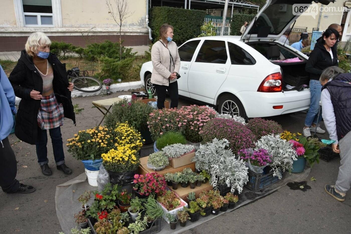 На выходных в Бахмуте состоялась ярмарка «День садовода», фото-7