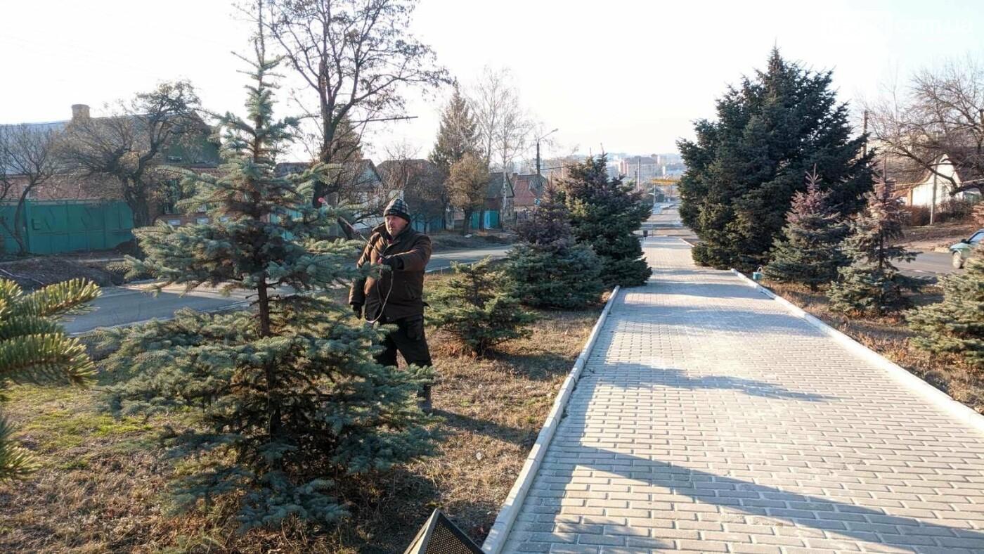 В Бахмуте начали красить елки (ФОТОФАКТ), фото-2