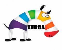 Логотип - Фотограф и Видеограф в Бахмуте - Арт-команда «Zebra»
