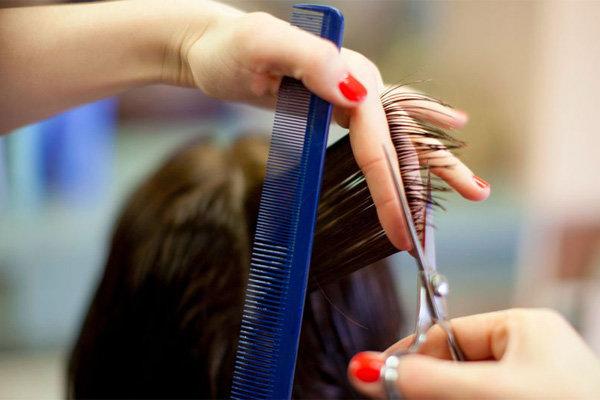 Если вы парикмахер, то можете работать дома, фото-1